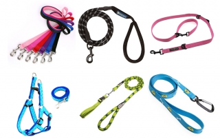 what is the best dog leash