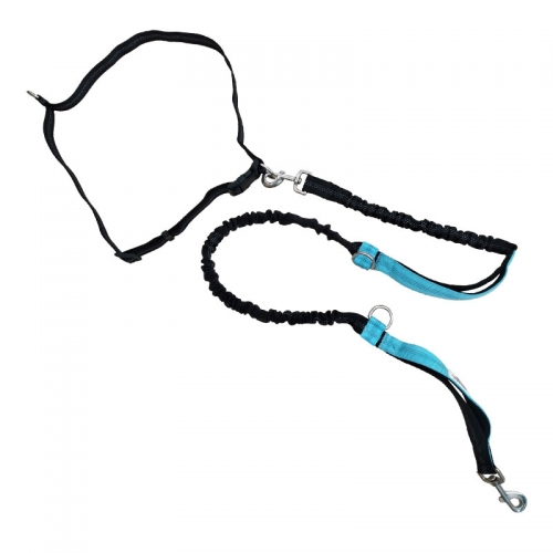Reflective Nylon Hands Free Dog Leash Lead